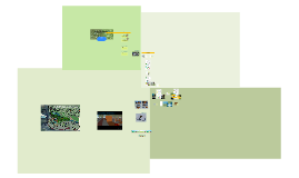 Copy of Revitalização Parque Urbano