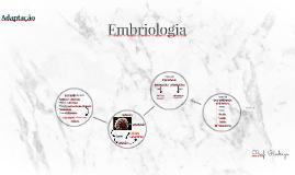 Copy of Aula 10 - Embriologia
