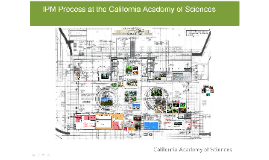 Copy of The IPM Process at the California Academy of Science