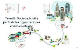 Tarea 12. Sociedad civil y perfil de las organizaciones civiles en México