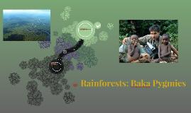 Rainforests: Baka Pygmies