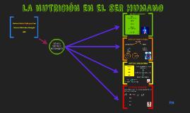 Copy of LA NUTRICIÓN EN EL SER HUMANO