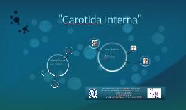 Copy of Carotida interna