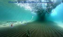 Historia de Biodinámica Craneosacral