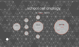 school cell analogy