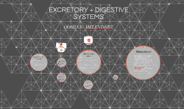 EXCRETORY + DIGESTIVE SYSTEMS