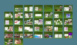 Taxonomia, Morfologia e Reprodução de Rhodophyta