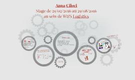 Anna Ciloci