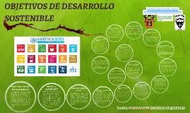 Los Objetivos de Desarrollo Sostenible constituyen un compro