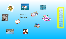 Goals Project