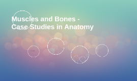 Muscles and Bones -