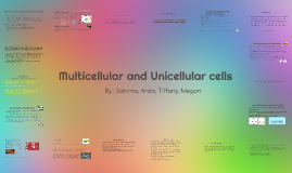Copy of Multicellular and Unicellular