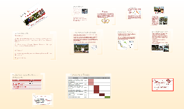 Copy of Copy of RAFAEL LUCIO