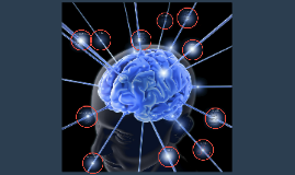 Neuromarketing; koopgedrag