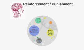 Reinforcement/Punishment