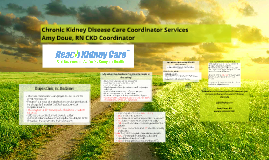 Chronic Kidney Disease Care Coordinator Services