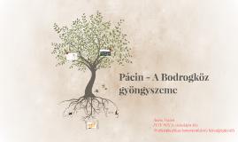 Pácin - A Bodrogköz gyöngyszeme