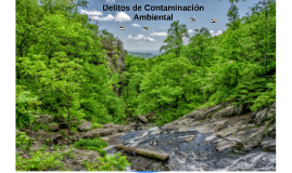 Delitos de Contaminación Ambiental