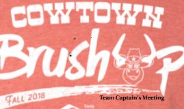 Cowtown Brush Up Logo