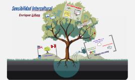 Sensibilidad Intercultural DMIS