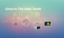 Glow In The Dark Turtle