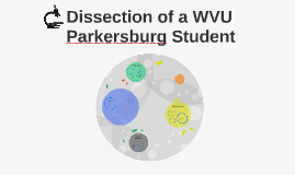 Dissection of a WVU Parkersburg Student