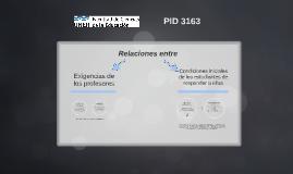 Presentación PID 3163