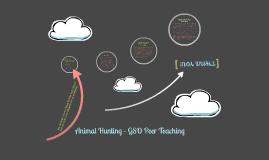 GSO Peer Teaching