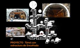 Túnel con estructura de Encofrado