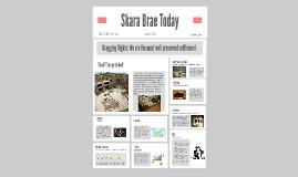 Newspaper for the Skara Brae thing