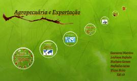Copy of Agropecuária e Exportaçã