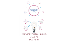 Cardiovascular System Lesson 3