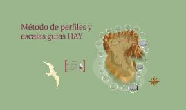 Copy of Método de perfiles y escalas guías HAY