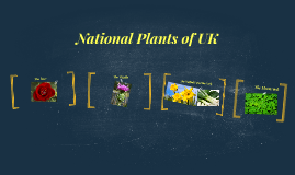 National Plants of UK II
