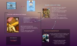 Derecho Laboral en Argentina