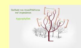 Biologie hygrophyten