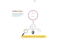 Copy of Le comportement du consommateur