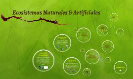 Ecosistemas Naturales & Artificiales