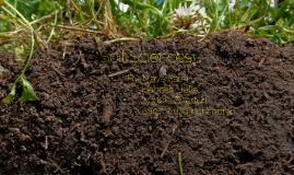 15-16 Soils Presentation