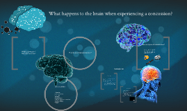 What happens to the brain when experiencing a concussion?