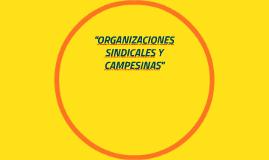 """""""ORGANIZACIONES SINDICALES Y CAQMPESINAS"""""""
