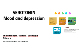 Serotonin Mood and depression