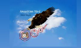 Biology Bald Eagle Project