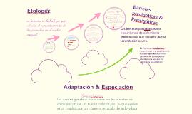 Copy of Adaptación & Especiación.