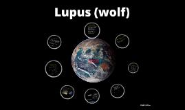 Lupus (wolf)