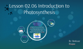 Lesson 02.06 Introduction to Photosynthesis
