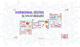 HORMONAL SİSTEM