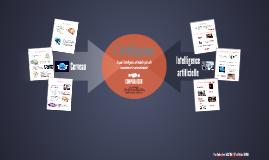TPE 2015 : L'intelligence