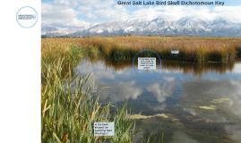 Great Salt Lake Bird Skull Dichotomous Key