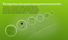 Copy of The importance of ecosystem management and protection